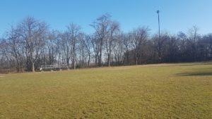 Moderny Samorin pre vsetkych stare ihrisko STK Pomle stromy